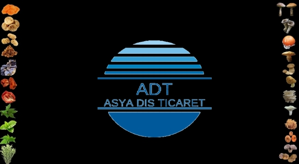 Asya Dıs Tıcaret