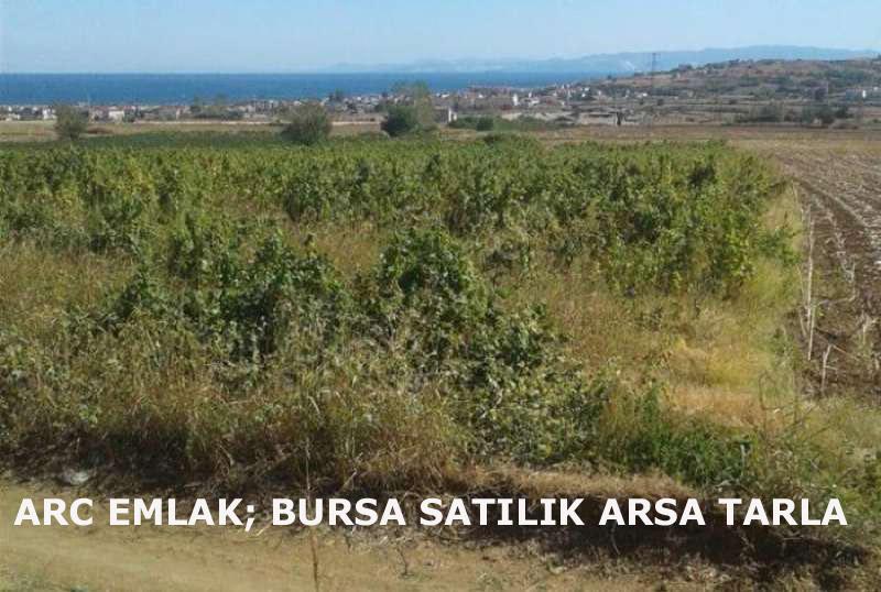 Arc Emlak; Bursa Satılık Arsa, Satılık Tarla, Sahibinden Satılık Arsa Tarla Bursa Osmangazi Yenişehir